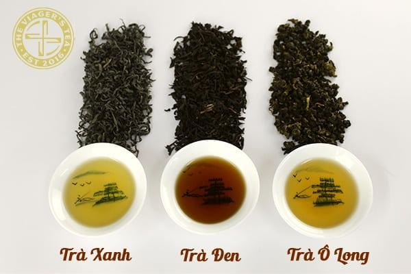 phân-biệt-các-loại-trà-pha-trà-sữa