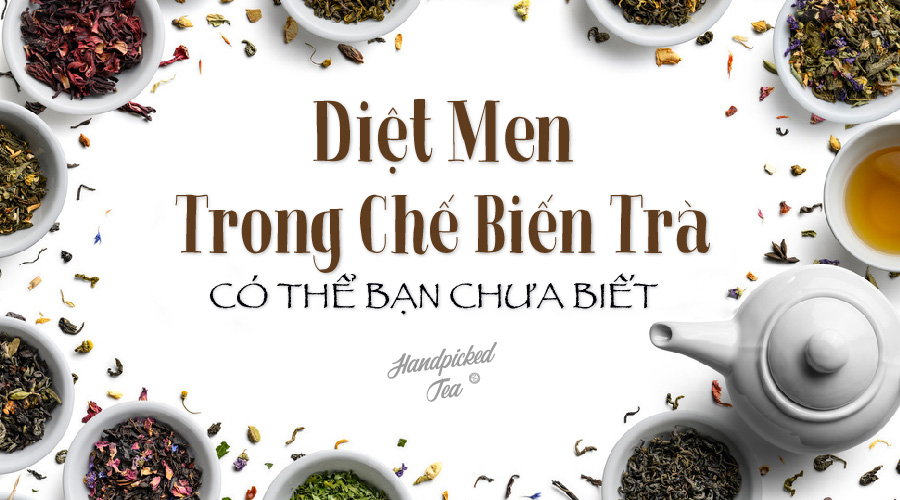 diet-men-trong-che-bien-tra
