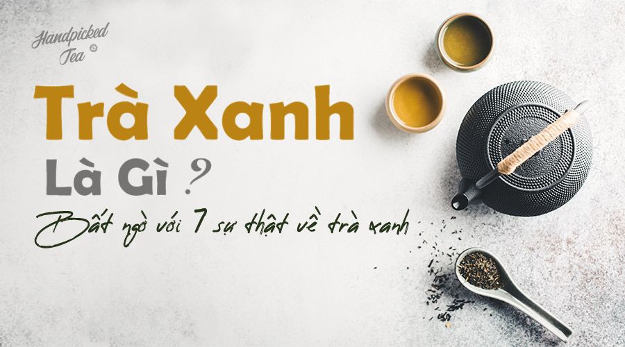 tra-xanh-la-gi-bat-ngo-voi-7-su-that-ve-tra-xanh